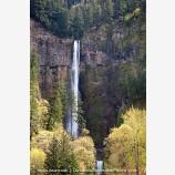 Multnomah Falls 2 Stock Image Columbia Gorge, Oregon