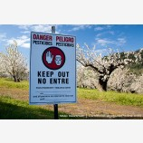 Cherry Orchard Danger Stock Image Columbia Gorge, Oregon