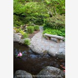 Japanese Garden in Spring 3 Stock Image Ashland, Oregon