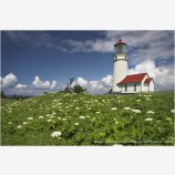 Cape Blanco Lighthouse Stock Image