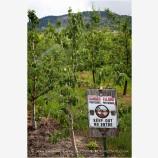 Winery Warning Sign Stock Image Medford, Oregon