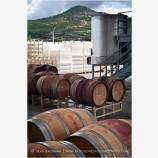 Wine Barrels 4 Stock Image Medford, Oregon