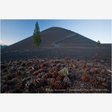 Lassen Volcanic National Park 14 Stock Image California
