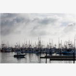 Charleston Harbor Stock Image Oregon