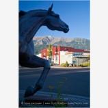 Frontier Town 4 Stock Image, Joseph, Oregon