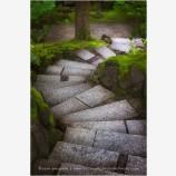 Garden Steps Stock Image, Portland, Oregon