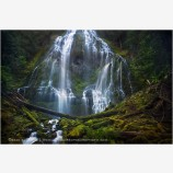 Deep Forest Falls Stock Image, Proxy Falls, Oregon