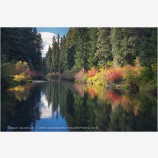 River Corridor Stock Image, Rogue River, Oregon
