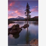 Pine Island Stock Image, Sparks Lake, Oregon