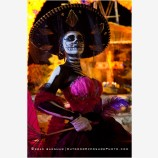 Day Of The Dead 3 Stock Image, Baja, Mexico