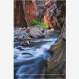 Virgin River Narrows 2 Stock Image, Zion National Park