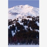 Mt. Bachelor 1 Stock Image, Oregon