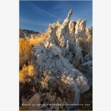 Mono Lake 9 Stock Image, California