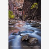 Virgin River Narrows 4 Stock Image, Zion National Park
