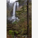 Silver Falls Stock Image, Oregon