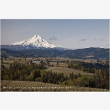 Hood River Valley Farmland 6 Stock Image, Oregon