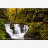 Lower Gorton Creek Falls 1, Columbia River, Oregon