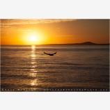 Cortez Sunrise 6 Stock Image, Baja, Mexico