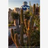 Baja Garden 3, Mexico