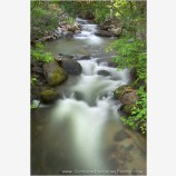Ashland Creek Stock Image, Lithia Park, Ashland, Oregon