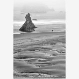 Alone On The Beach Stock Image, Bandon, Oregon
