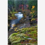 Takelma Gorge Fall I Stock Image, Rogue River, Oregon