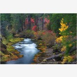 Takelma Gorge Fall ll Stock Image, Rogue River, Oregon