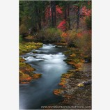 Takelma Gorge Fall lll Stock Image, Rogue River, Oregon