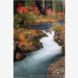 Upper Rogue In Fall Stock Image, Rogue River, Oregon