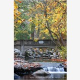 Atkinson Memorial Bridge II Stock Image, Lithia Park, Ashland, Oregon