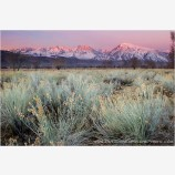 Sierra Mountains Sunrise Stock Image, Owens River Valley, California