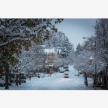 Snowy Down Town 38, Ashland, Oregon