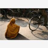 Living On The Street Composite Stock Image, Kathmandu, Nepal