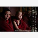 Thamo Nuns Stock Image, Kathmandu, Nepal