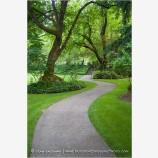 Winding Path In Lithia Park Stock Image, Ashland, Oregon