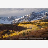 Dallas Divide Aspen Stock Image