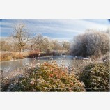 Ice Covered Pond 2 Stock Image Ashland, Oregon