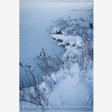 Lake Edge In Snow Stock Image Ashland, Oregon