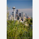 Seattle Skyline 2 Stock Image Washington