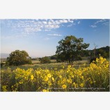 Rogue Valley 3 Stock Image,