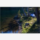 Camping On Lake 1 Stock Image