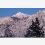 Mt. Ashland 1 Stock Image,
