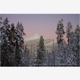 Mt. Ashland 2 Stock Image,