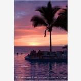 Tropical Resort 1 Stock Image,