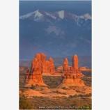 Petrified Dunes and La Sal Mountains Stock Image, Arches National Park, Utah