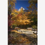 Elizabethan Theater in Fall II Stock Image, Ashland, Oregon