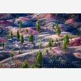Cool World Print, Lassen National Park, California