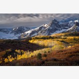 Dallas Divide Aspen Print, Uncompahgre National Forest, Colorado