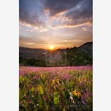 Greensprings Sunset II Print, Ashland, Oregon