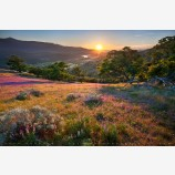 Greensprings Sunset Print, Ashland, Oregon